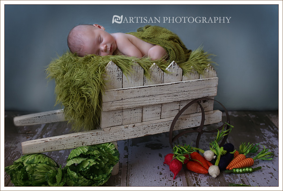 Newborn baby in white wagon with vegetables