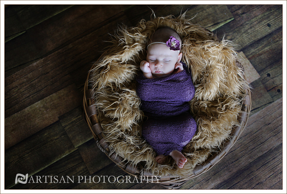 picture of baby girl in basket wrapped in purple fabric