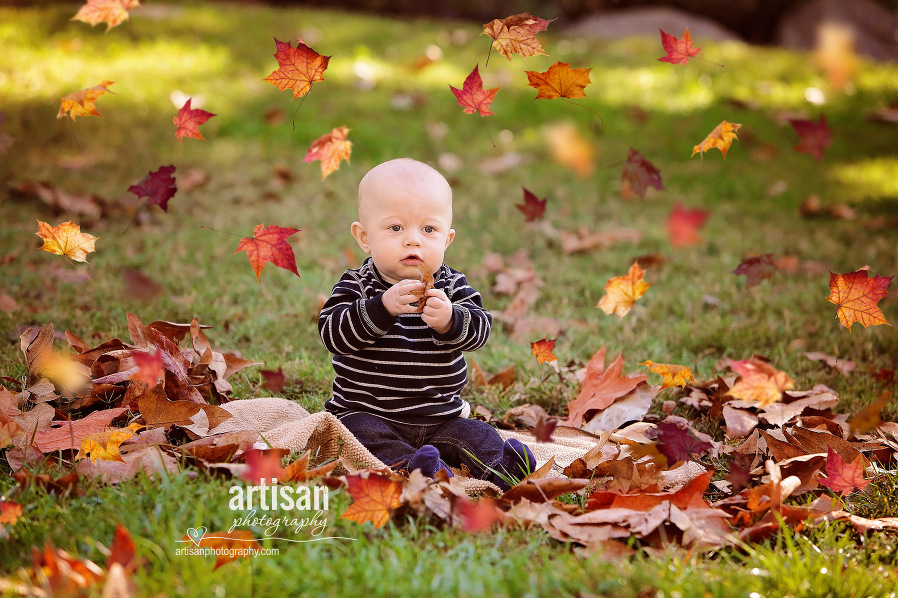 Toddler sitting with fall leaves falling all around him in North county - Carlsbad